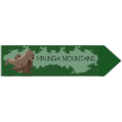 Travel Souvenir Virunga Mountains